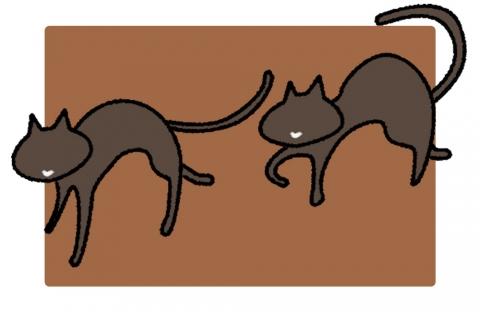 2匹のこげ茶色の猫のイラスト 無料イラストのimt 商用ok加工ok