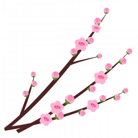 ひなまつり桃の花のイラスト 無料イラストのimt 商用ok加工ok