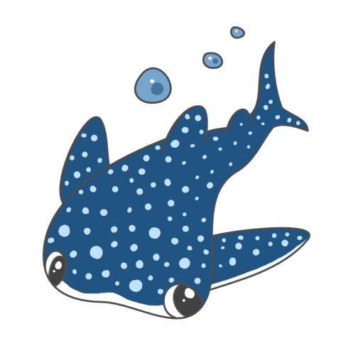 ジンベエザメの画像 p1_19
