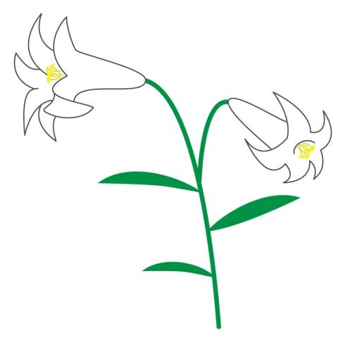 ユリの花が咲いてるイラスト 無料イラストのimt 商用ok加工ok