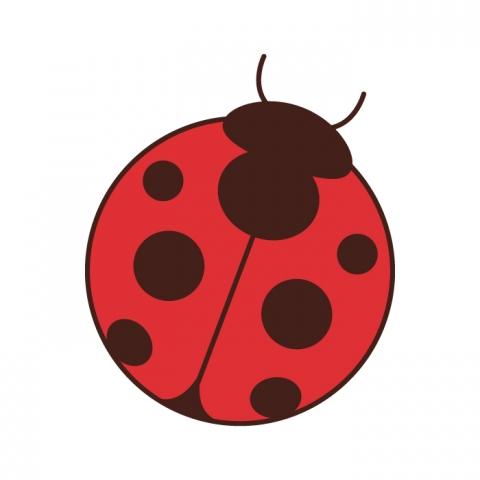 昆虫の無料イラスト 191種類 無料イラストのimt 商用加工ok