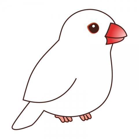 白の文鳥のイラスト 無料イラストのimt 商用ok加工ok