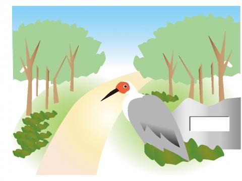 新潟県 トキの森公園のトキのイラスト 無料イラストのimt 商用ok加工ok