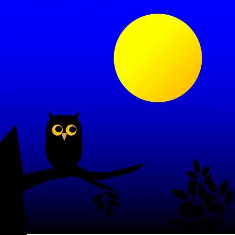 月とふくろうのイラスト 無料イラストのimt 商用ok加工ok