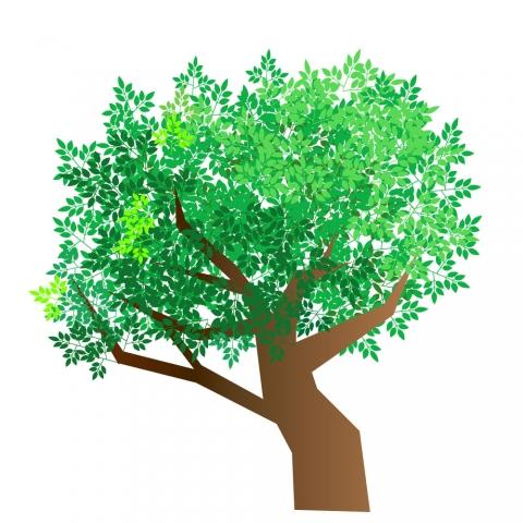 木に葉がたくさんついているイラスト 無料イラストのimt 商用ok加工ok
