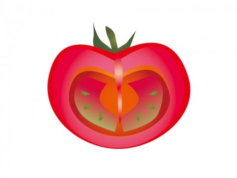 トマトの断面イラスト 無料イラストのimt 商用ok 加工ok